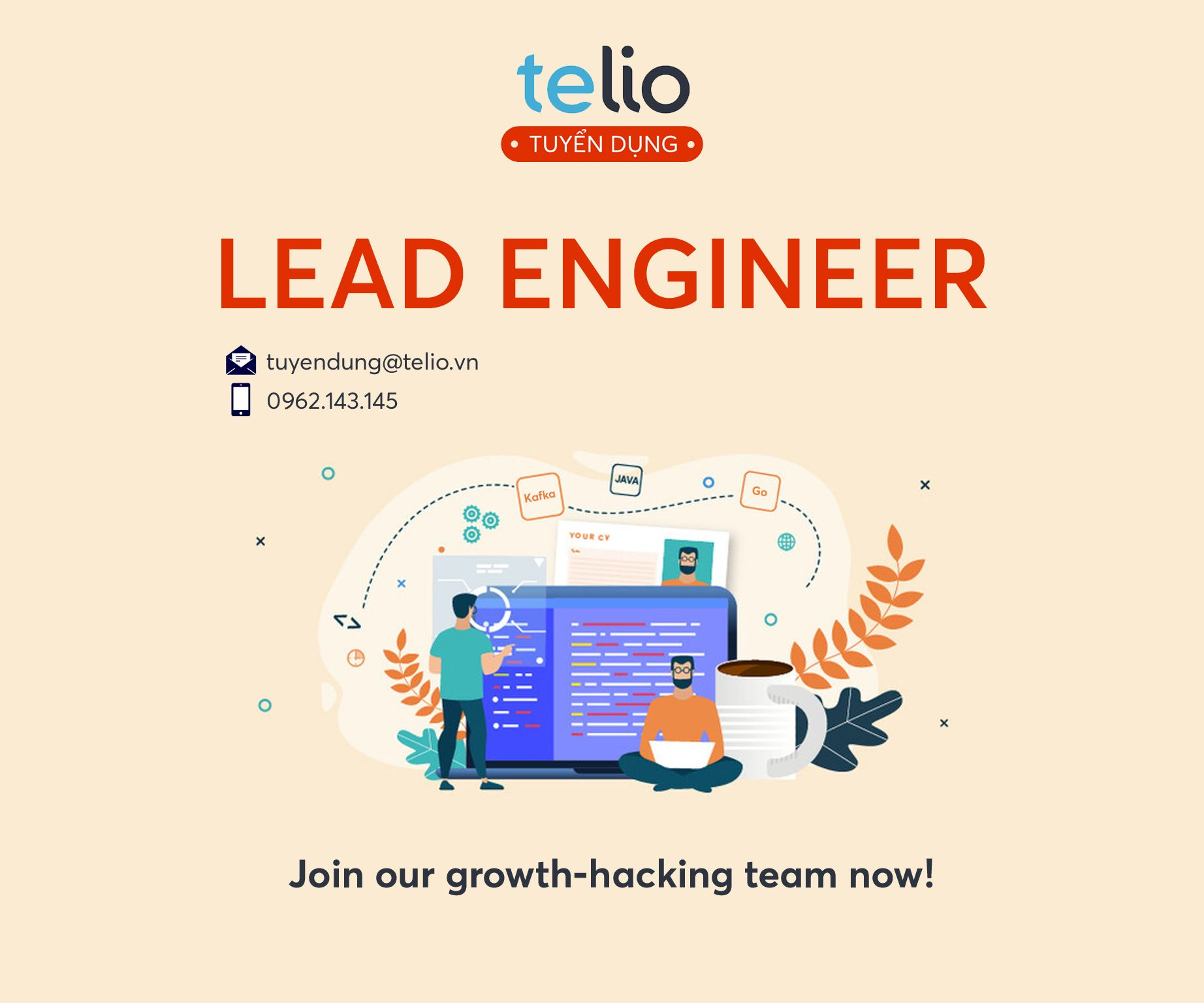 [HN/HCM] Lead Engineer